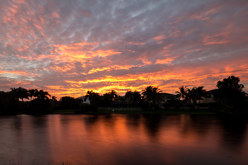 morning trees houses lake reflection water clouds sunrise canon dawn canal day unitedstates florida suburban cloudy bluesky coralsprings 6d tiltshift tse17