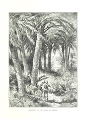 Image taken from page 301 of 'Travels in the East; including a visit to Egypt and the Holy Land. [Translated from the German.] ... With ... illustrations by Pausinger, etc'
