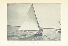 Image taken from page 119 of 'Bland Oleandrar och Liljor. Minnen från en sommar på Bermuda eller Somers őar, etc'