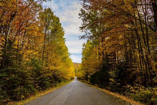 autumn vanishingpoint seasons unitedstates fallcolors maine rangeley