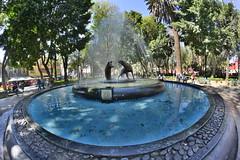 Plaza de Coyoacán