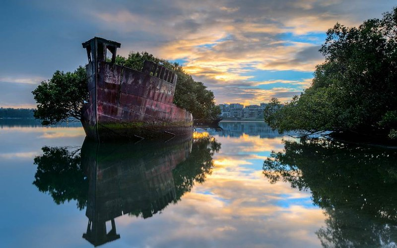 floating-forest-sydney-australia