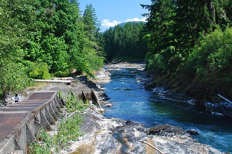 Fish Ladder at Skutz Falls, Cowichan River Park, Cowichan Valley, Vancouver Island, British Columbia, Canada