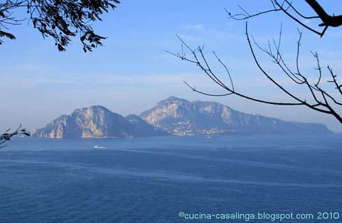 Blick nach Capri