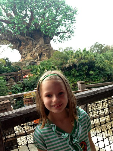Bella at Animal Kingdom