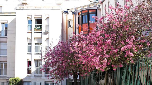 Rue Santos-Dumont