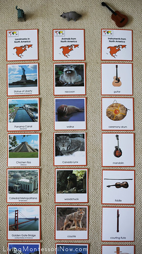 North America Landmarks, Animals, and Instruments Sorting