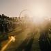 Small photo of Coachella