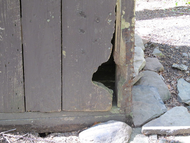 Porcupines have been eating at the door...