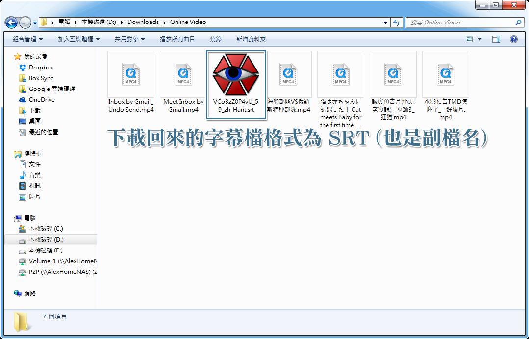 下載回來的字幕檔副檔名為 SRT