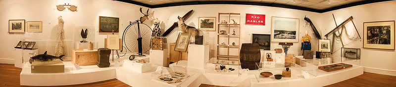 Curators Choice - Tullie House