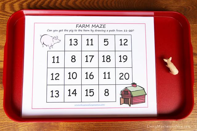 Farm Maze with Pig