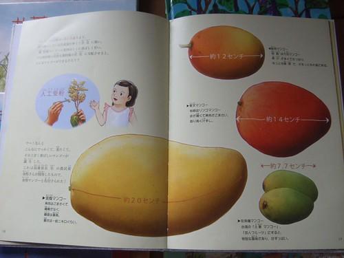 玉井マンゴー物語