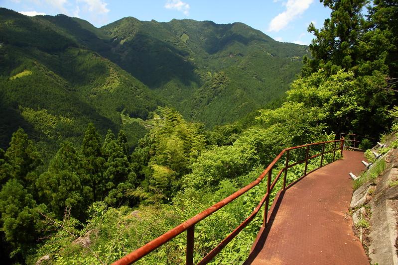 IMG_8180_6-16 Ikegawa Wandering