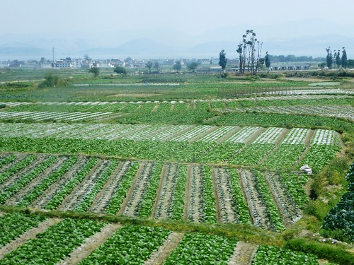 Yunnan13-Dali-Lijiang-Route (9)