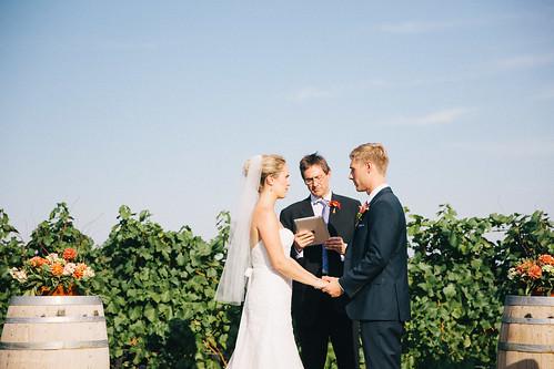 Melissa & Drew / Hawks View Cellars Wedding