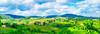 Tuscany-Rolling, Hills-Vineyards-Landscape-Italy_Ryan-Tyler-Smith.jpg by inov8d
