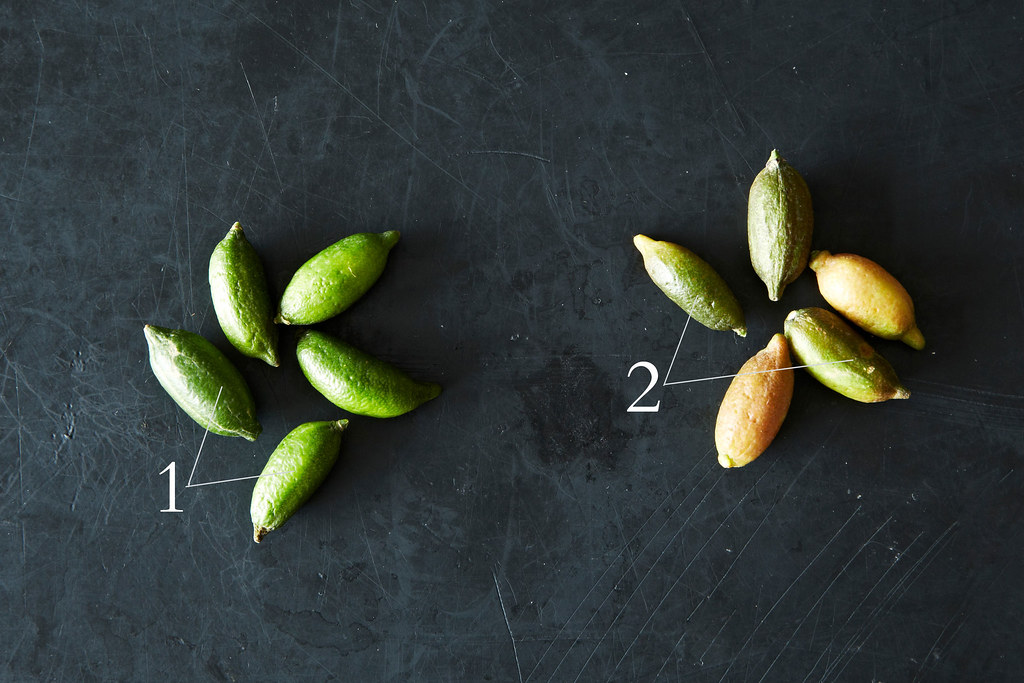 All About Finger Limes, from Food52