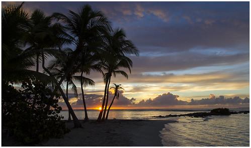 sunrise sainteanne guadeloupe antilles leverdesoleil gwada
