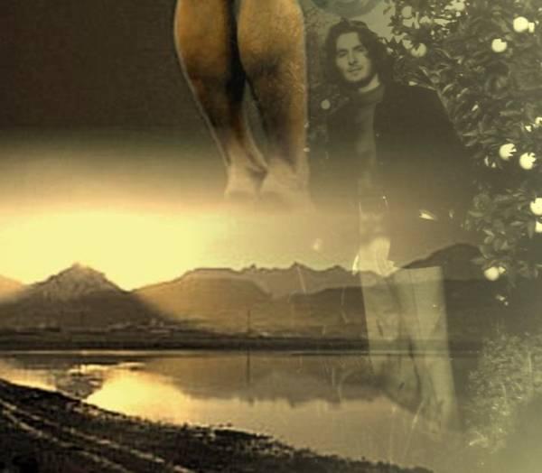 Il poeta e Aurélia Steiner d'Ushuaia
