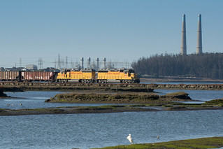 Union Pacific in the Elkhorn Slough
