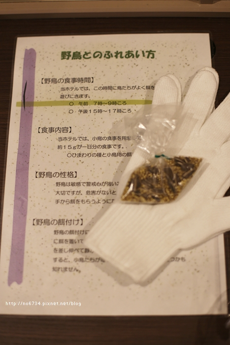 20140122_HokkaidoSki_0084 ff