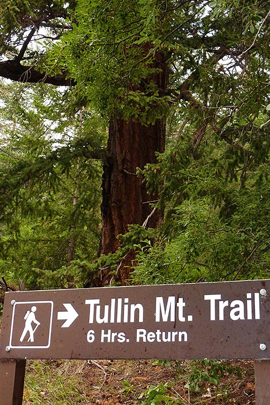 Tullin Mountain Trail, Ts'yl-os Provincial Park, Chilko Lake, Chilcotin, British Columbia, Canada