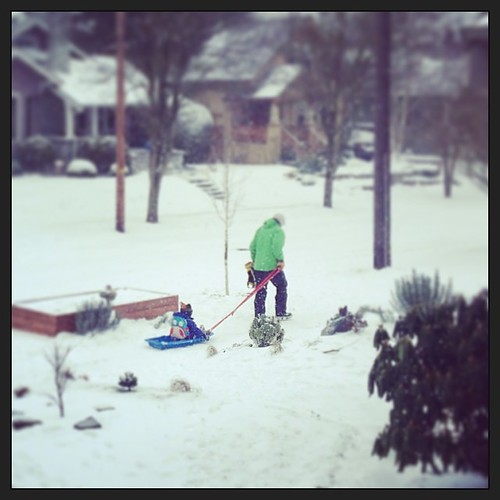 They're on an adventure up to the neighborhood store. #wow #snowday #rare #fun