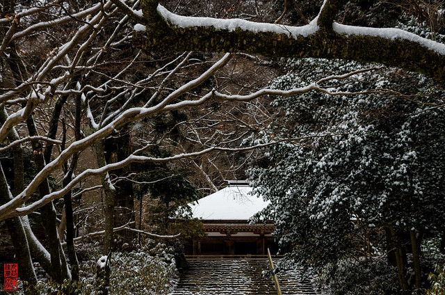 「雪の金堂」 室生寺 - 奈良
