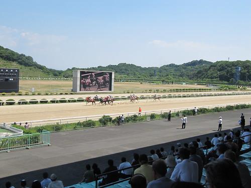 佐賀競馬場のスタンドからレースを眺める