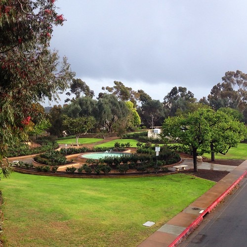 A break in the rain at Balboa Park