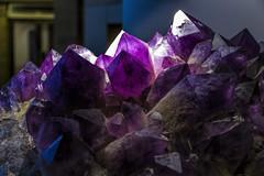 flower(0.0), jewellery(0.0), petal(0.0), amethyst(1.0), purple(1.0), gemstone(1.0),
