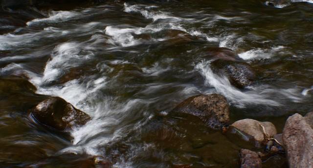 Creek Crossing in the Steens