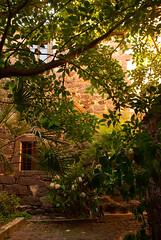 Back yard, Ghilarza