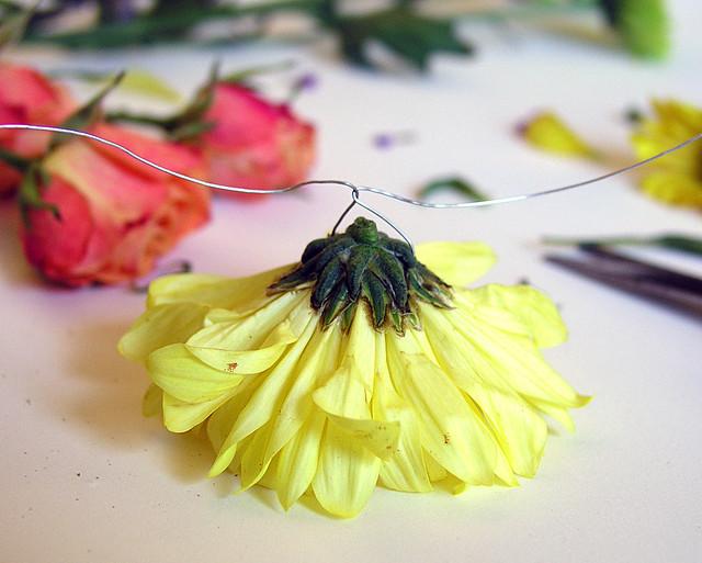 6.17.13 flowers3