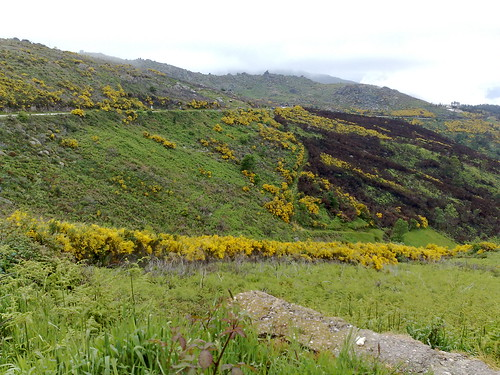 Primavera em Montemuro