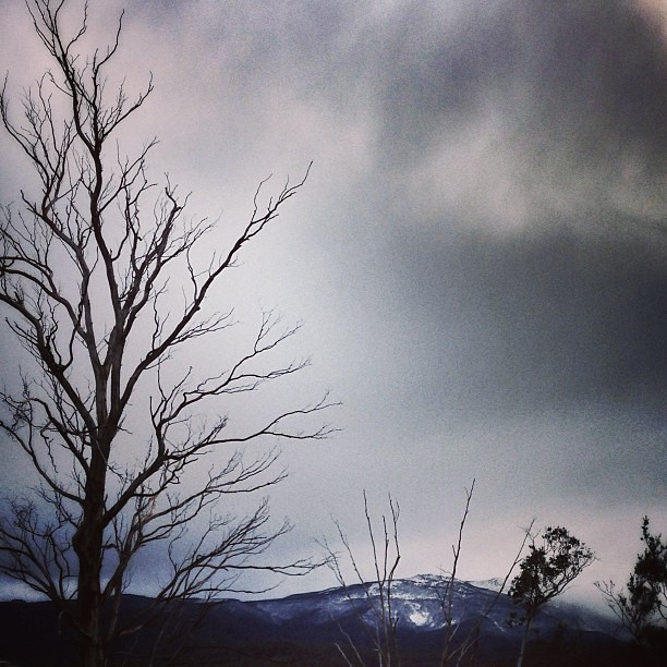 A nice little drop of snow on the mountain. || #mountwellington #thepassofcaradhras