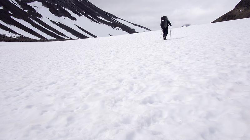 Ein Schneefeld