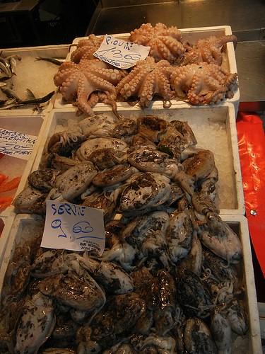 DSCN3115 _ Pescheria, Fish Market, Rialto Mercato, Venezia