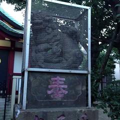 狛犬探訪 南蒲田北野神社 阿吽とも子連れ