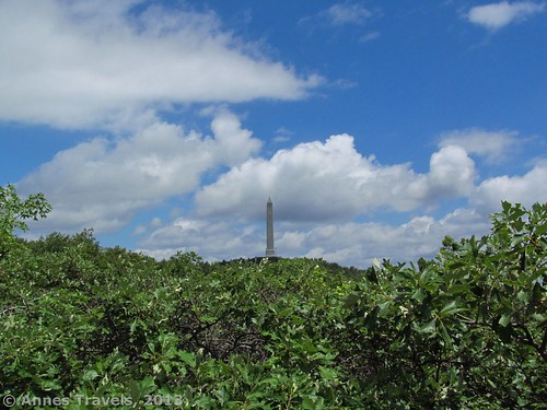 The High Point Monument rises above the trees, High Point State Park, New Jersey