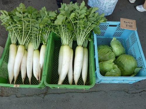 野菜の直売 中沢ヴィレッジ