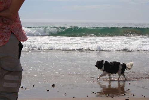 Ben, the waves, and Dachary