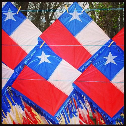 Septiembre #Olmué #Chile #Volantín