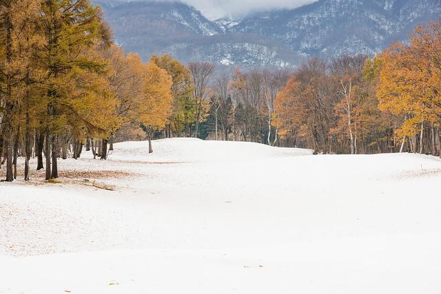 写真_冬のプロローグ
