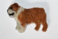Englannin bulldoggi