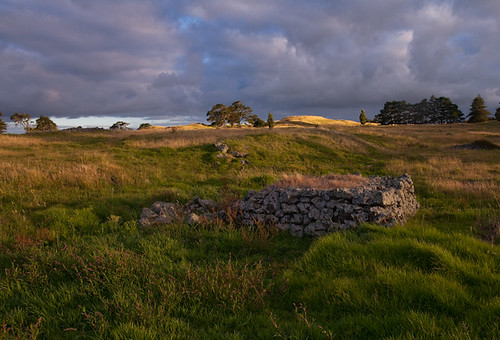 sunset newzealand stone dusk auckland stonefields otuataua