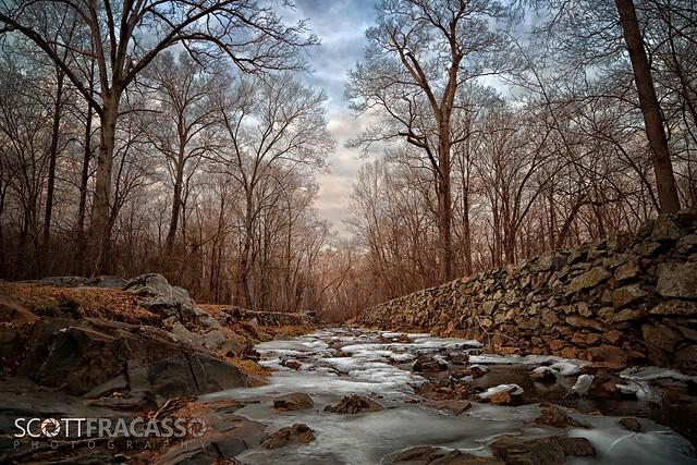 Great Falls VA, Winter 2014