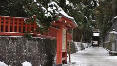 Tōshō-gū shrine, Nikko (2010)