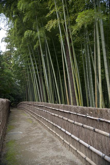 Kairakuen 02 水戸偕楽園